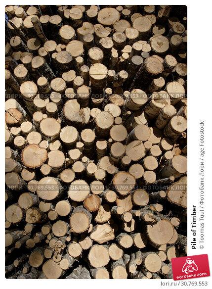 Купить «Pile of Timber», фото № 30769553, снято 25 мая 2019 г. (c) age Fotostock / Фотобанк Лори