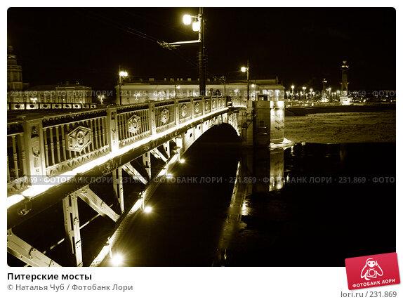 Питерские мосты, фото № 231869, снято 29 января 2007 г. (c) Наталья Чуб / Фотобанк Лори