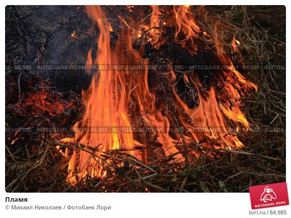 Пламя, фото № 84985, снято 7 сентября 2007 г. (c) Михаил Николаев / Фотобанк Лори