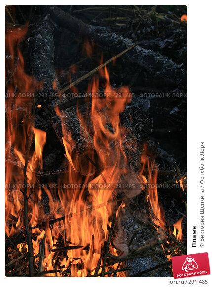 Пламя, фото № 291485, снято 2 мая 2008 г. (c) Виктория Щепкина / Фотобанк Лори
