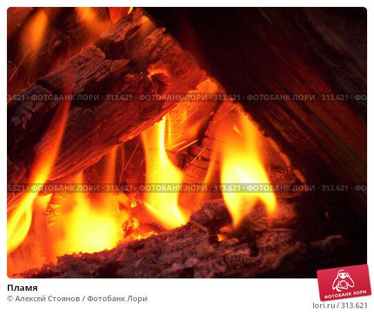 Купить «Пламя», фото № 313621, снято 18 июля 2007 г. (c) Алексей Стоянов / Фотобанк Лори