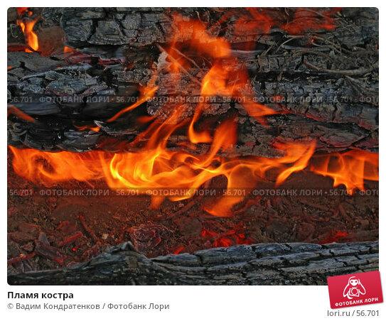 Пламя костра, фото № 56701, снято 28 июня 2017 г. (c) Вадим Кондратенков / Фотобанк Лори