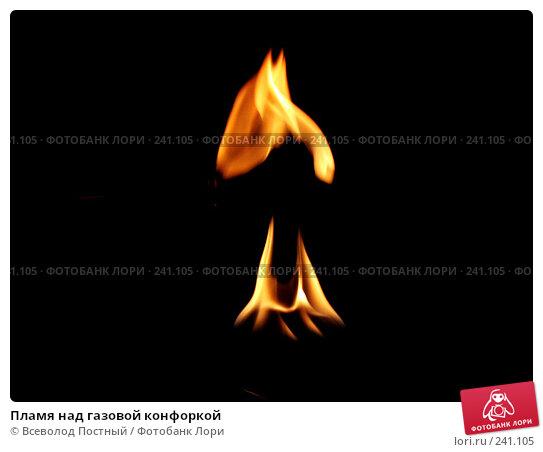 Пламя над газовой конфоркой, фото № 241105, снято 3 июня 2005 г. (c) Всеволод Постный / Фотобанк Лори