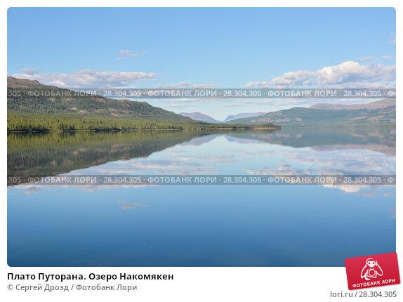 Купить «Плато Путорана. Озеро Накомякен», фото № 28304305, снято 2 августа 2015 г. (c) Сергей Дрозд / Фотобанк Лори