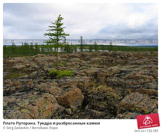 Плато Путорана. Тундра и разбросанные камни, фото № 132181, снято 10 августа 2004 г. (c) Serg Zastavkin / Фотобанк Лори