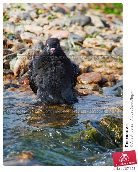 Плескание, фото № 87125, снято 27 мая 2007 г. (c) Alla Andersen / Фотобанк Лори