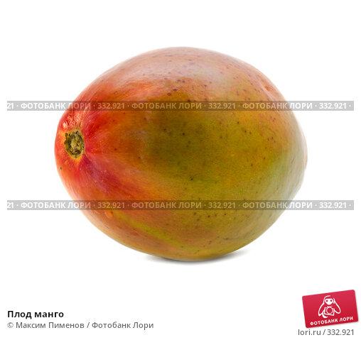 Плод манго, фото № 332921, снято 20 марта 2008 г. (c) Максим Пименов / Фотобанк Лори