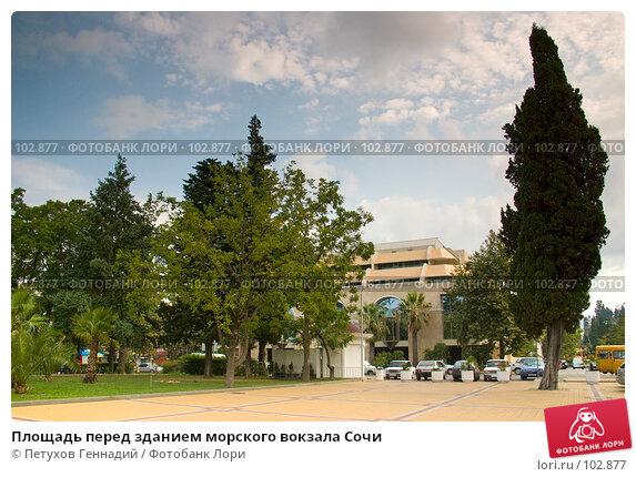 Купить «Площадь перед зданием морского вокзала Сочи», фото № 102877, снято 17 декабря 2017 г. (c) Петухов Геннадий / Фотобанк Лори