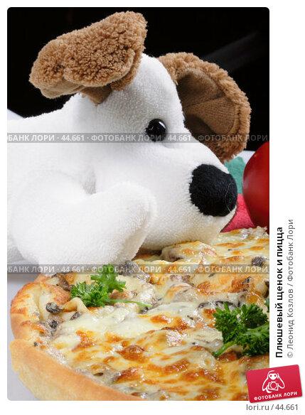 Плюшевый щенок и пицца, фото № 44661, снято 17 мая 2007 г. (c) Леонид Козлов / Фотобанк Лори