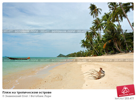 Пляж на тропическом острове, фото № 203477, снято 18 августа 2007 г. (c) Знаменский Олег / Фотобанк Лори