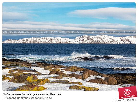 Побережье Баренцева моря, Россия, фото № 22350781, снято 11 марта 2016 г. (c) Наталья Волкова / Фотобанк Лори