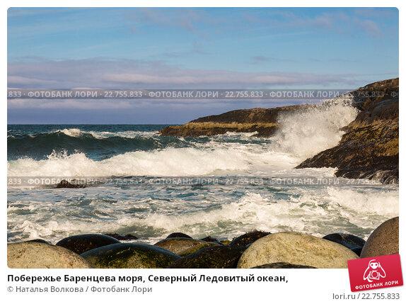Побережье Баренцева моря, Северный Ледовитый океан,, фото № 22755833, снято 11 марта 2016 г. (c) Наталья Волкова / Фотобанк Лори