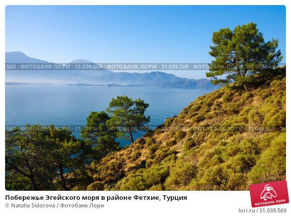 Купить «Побережье Эгейского моря в районе Фетхие, Турция», фото № 31039569, снято 13 июня 2019 г. (c) Natalya Sidorova / Фотобанк Лори
