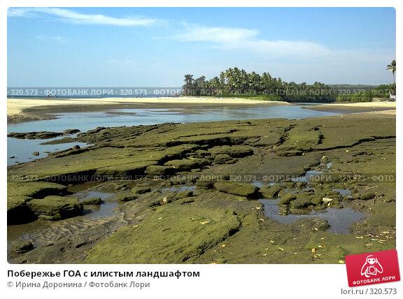 Побережье ГОА с илистым ландшафтом, фото № 320573, снято 24 декабря 2007 г. (c) Ирина Доронина / Фотобанк Лори