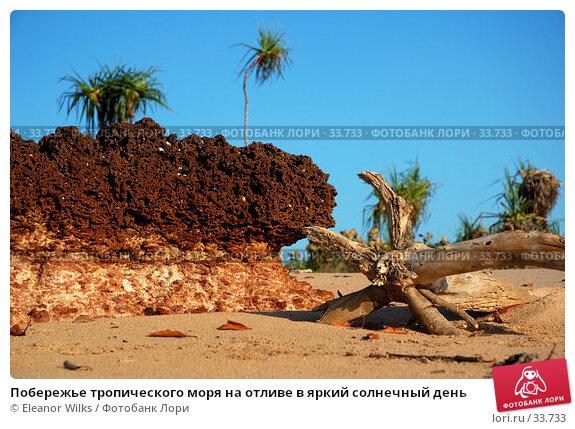 Побережье тропического моря на отливе в яркий солнечный день, фото № 33733, снято 31 декабря 2006 г. (c) Eleanor Wilks / Фотобанк Лори