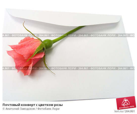 Купить «Почтовый конверт с цветком розы», фото № 264861, снято 27 мая 2007 г. (c) Анатолий Заводсков / Фотобанк Лори