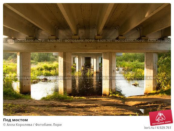 Под мостом. Стоковое фото, фотограф Алла Королева / Фотобанк Лори