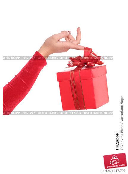 Купить «Подарок», фото № 117797, снято 15 ноября 2007 г. (c) Vdovina Elena / Фотобанк Лори