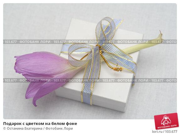 Подарок с цветком на белом фоне, фото № 103677, снято 28 марта 2017 г. (c) Останина Екатерина / Фотобанк Лори