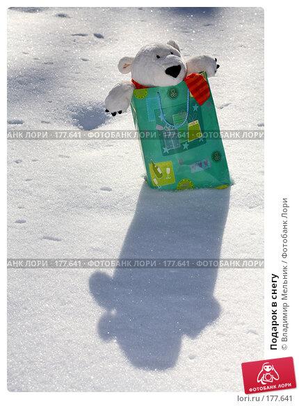 Подарок в снегу, фото № 177641, снято 11 февраля 2007 г. (c) Владимир Мельник / Фотобанк Лори