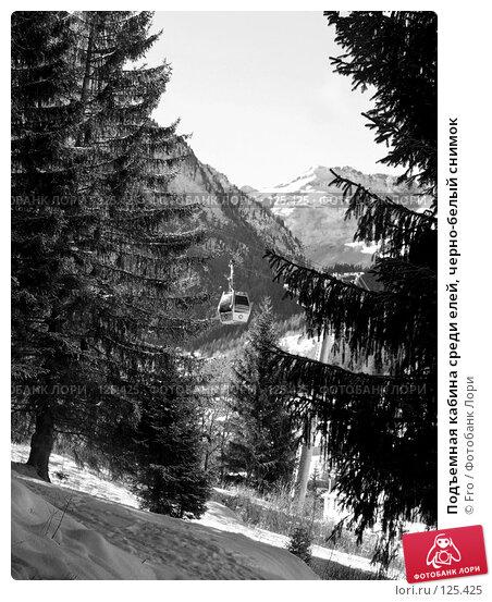 Подъемная кабина среди елей, черно-белый снимок, фото № 125425, снято 22 августа 2017 г. (c) Fro / Фотобанк Лори