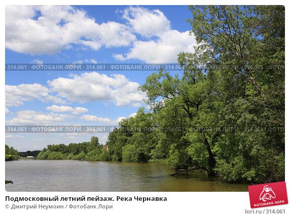 Подмосковный летний пейзаж. Река Чернавка, эксклюзивное фото № 314061, снято 2 июня 2008 г. (c) Дмитрий Неумоин / Фотобанк Лори