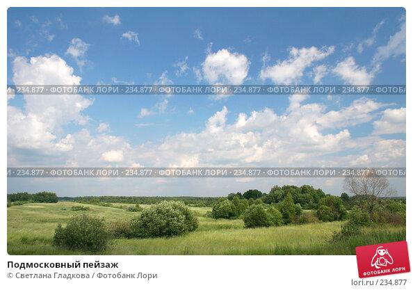 Подмосковный пейзаж, фото № 234877, снято 24 августа 2017 г. (c) Cветлана Гладкова / Фотобанк Лори
