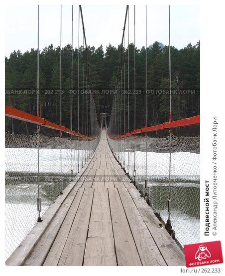 Подвесной мост, фото № 262233, снято 12 апреля 2008 г. (c) Александр Литовченко / Фотобанк Лори