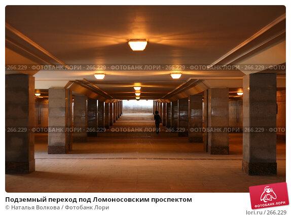 Подземный переход под Ломоносовским проспектом, эксклюзивное фото № 266229, снято 29 апреля 2008 г. (c) Наталья Волкова / Фотобанк Лори