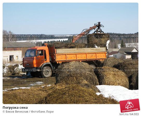 Погрузка сена, фото № 64933, снято 30 марта 2007 г. (c) Бяков Вячеслав / Фотобанк Лори