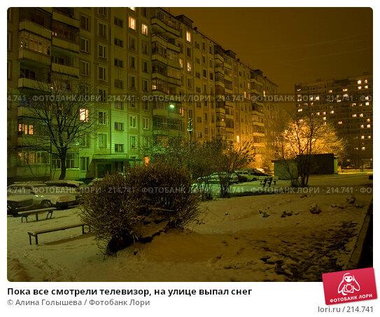 Пока все смотрели телевизор, на улице выпал снег, эксклюзивное фото № 214741, снято 4 марта 2008 г. (c) Алина Голышева / Фотобанк Лори