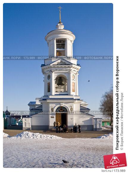 Купить «Покровский кафедральный собор в Воронеже», фото № 173989, снято 30 декабря 2007 г. (c) Борис Панасюк / Фотобанк Лори