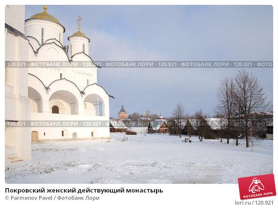 Покровский женский действующий монастырь, фото № 120921, снято 18 ноября 2007 г. (c) Parmenov Pavel / Фотобанк Лори
