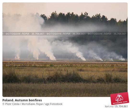 Poland. Autumn bonfires. Стоковое фото, фотограф Piotr Ciesla / age Fotostock / Фотобанк Лори