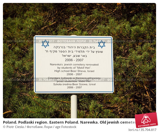 Poland. Podlaski region. Eastern Poland. Narewka. Old jewish cemetery. Стоковое фото, фотограф Piotr Ciesla / age Fotostock / Фотобанк Лори