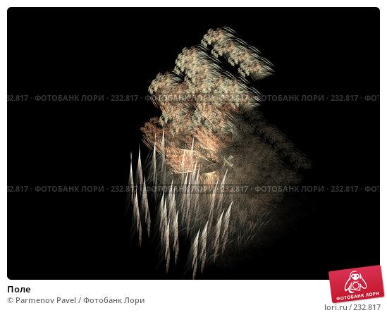 Поле, иллюстрация № 232817 (c) Parmenov Pavel / Фотобанк Лори