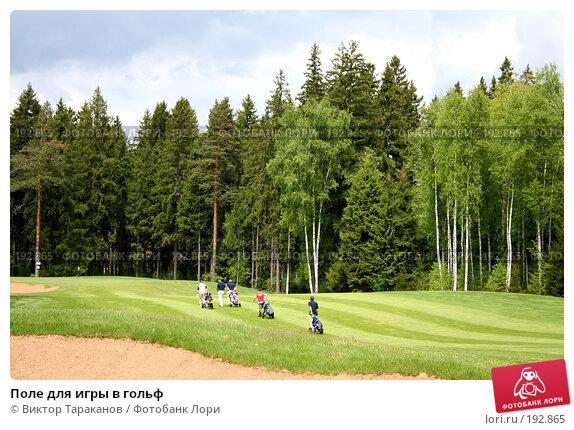 Поле для игры в гольф, эксклюзивное фото № 192865, снято 31 мая 2006 г. (c) Виктор Тараканов / Фотобанк Лори