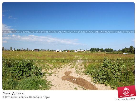 Поле. Дорога., фото № 141637, снято 24 июня 2007 г. (c) Катыкин Сергей / Фотобанк Лори