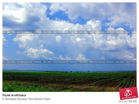 Поле и облака, фото № 58785, снято 30 июня 2007 г. (c) Валерия Потапова / Фотобанк Лори