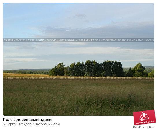 Поле с деревьями вдали, фото № 17041, снято 2 июля 2006 г. (c) Сергей Ксейдор / Фотобанк Лори