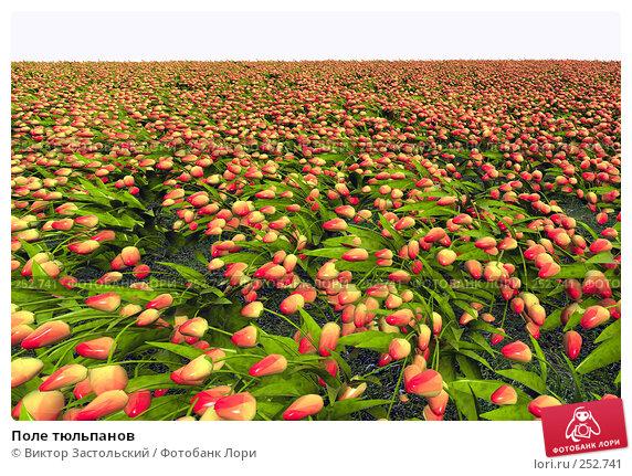 Поле тюльпанов, иллюстрация № 252741 (c) Виктор Застольский / Фотобанк Лори