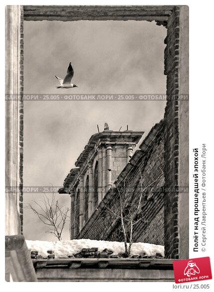 Купить «Полёт над прошедшей эпохой», фото № 25005, снято 18 марта 2018 г. (c) Сергей Лаврентьев / Фотобанк Лори
