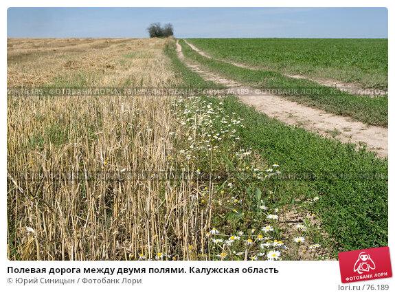 Полевая дорога между двумя полями. Калужская область, фото № 76189, снято 11 августа 2007 г. (c) Юрий Синицын / Фотобанк Лори