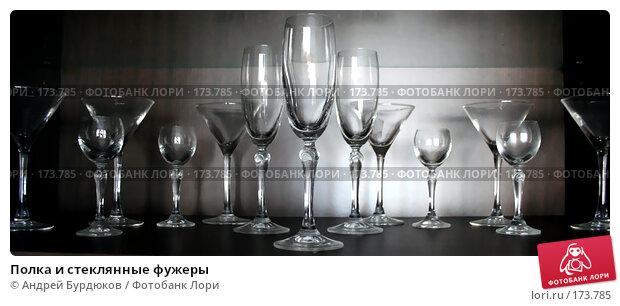 Полка и стеклянные фужеры, фото № 173785, снято 24 декабря 2007 г. (c) Андрей Бурдюков / Фотобанк Лори
