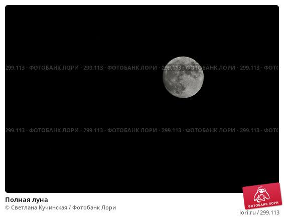 Полная луна, фото № 299113, снято 20 марта 2008 г. (c) Светлана Кучинская / Фотобанк Лори
