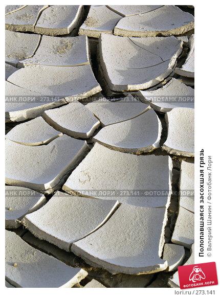 Полопавшаяся засохшая грязь, фото № 273141, снято 28 ноября 2007 г. (c) Валерий Шанин / Фотобанк Лори