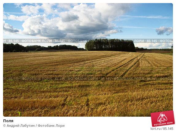 Купить «Поля», фото № 85145, снято 1 сентября 2007 г. (c) Андрей Лабутин / Фотобанк Лори