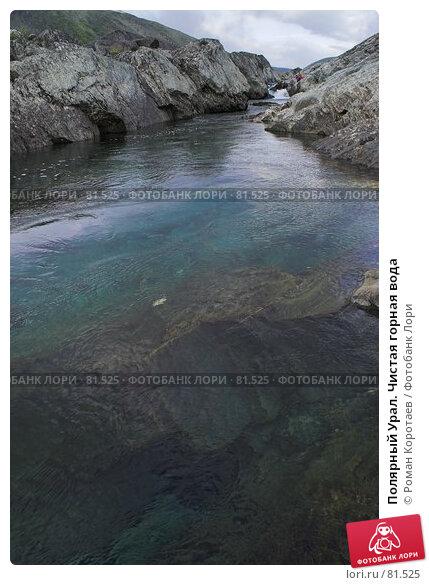 Полярный Урал. Чистая горная вода, фото № 81525, снято 7 августа 2007 г. (c) Роман Коротаев / Фотобанк Лори