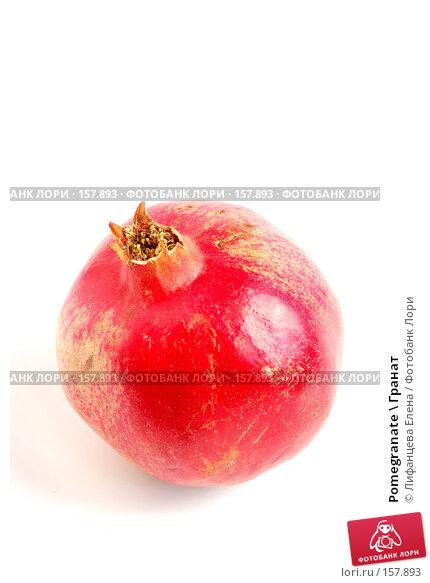 Pomegranate \ Гранат, фото № 157893, снято 20 декабря 2007 г. (c) Лифанцева Елена / Фотобанк Лори