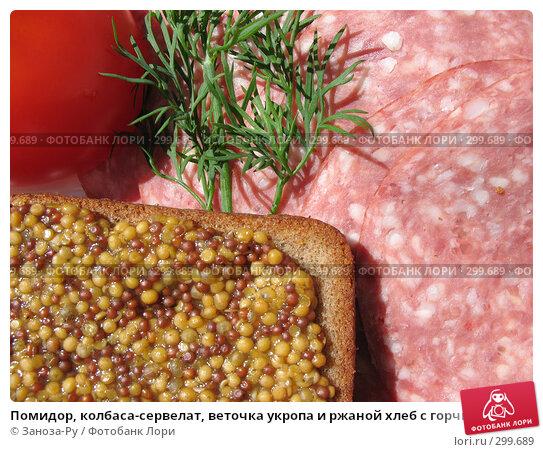 Помидор, колбаса-сервелат, веточка укропа и ржаной хлеб с горчицей, фото № 299689, снято 24 мая 2008 г. (c) Заноза-Ру / Фотобанк Лори